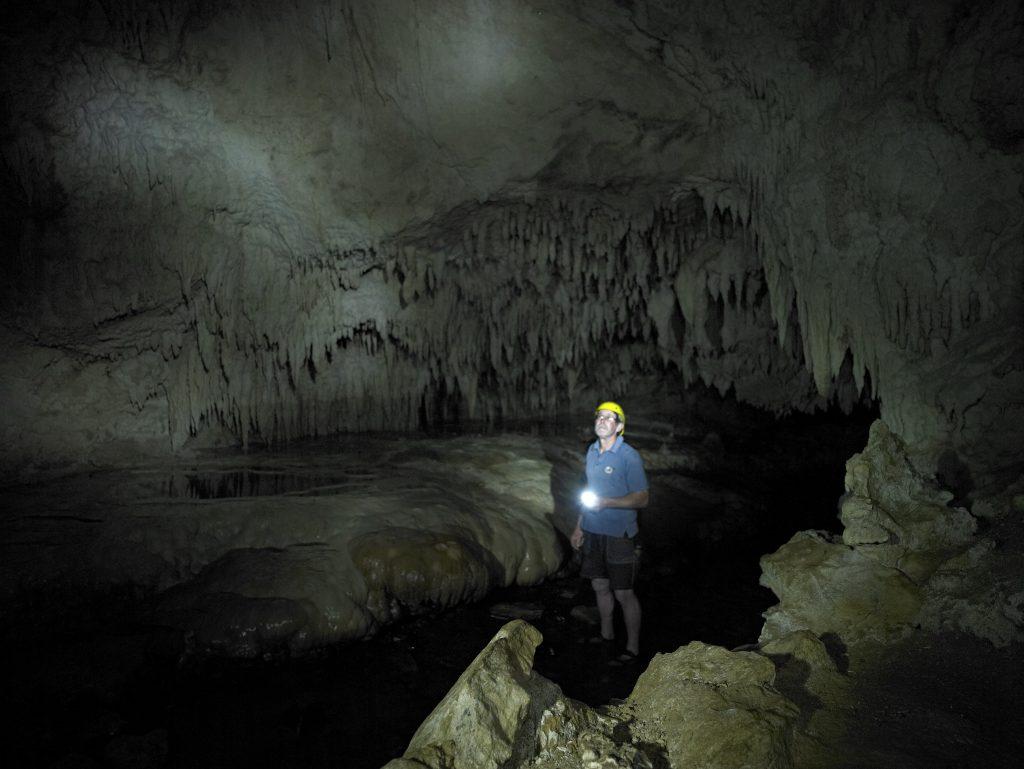nikau_cave1