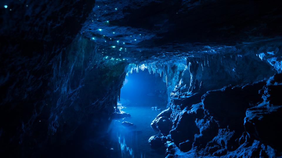 Nikau Cave – Vive la spéléologie !
