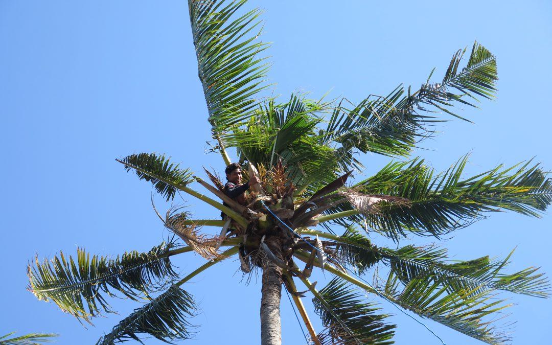 Bali l Une île aux multiples facettes…