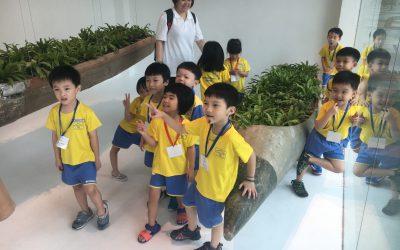 Visite express de Singapour